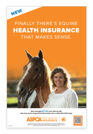 Equine Insurance Poster