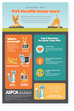Digging Into Pet Health Insurance Poster